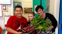 Cameron's School Garden After several months of hard work, division 5 has harvested beets from Cameron's School Garden. They will be roasting them tomorrow!
